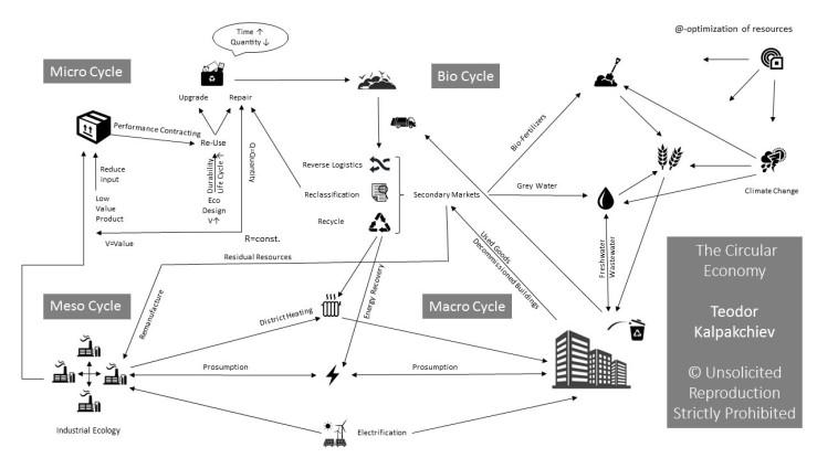 The Circular Economy.jpg